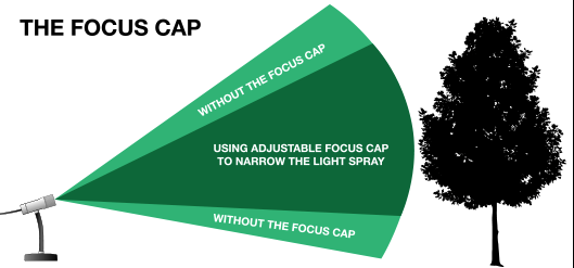 SMI-Focus-Cap