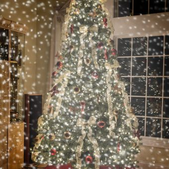christmas-treeW_2048x